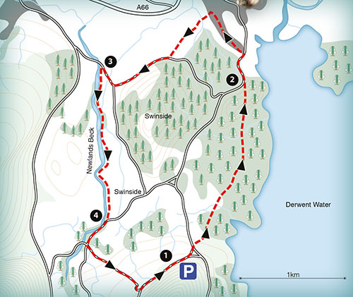 sample map of a walk around Mary Newlands Beck